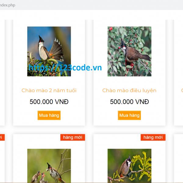 Tải source code website mua bán chim cảnh php có hướng dẫn