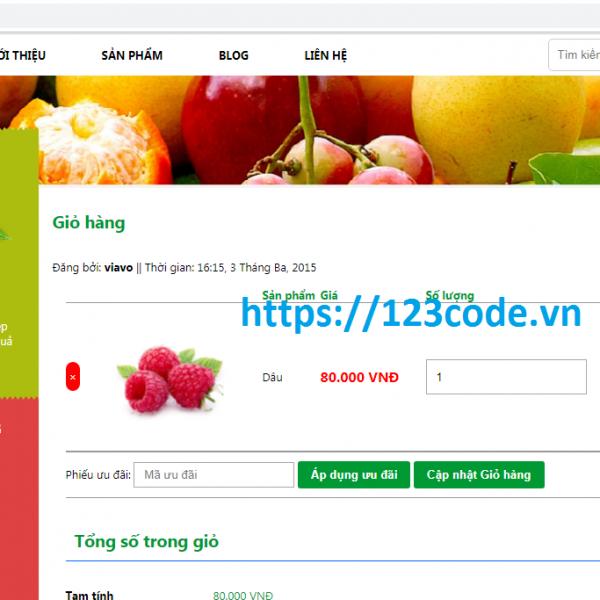 Source code wordpress bán hàng chuẩn Seo